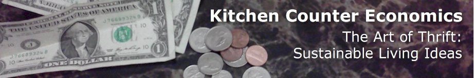 Kitchen Counter Economics Rotating Header Image