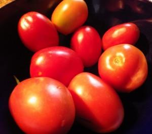 tomatopasta1