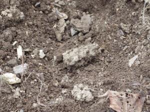 soil2 4-22